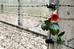 Mercoledì 27 gennaio giornata della Memoria